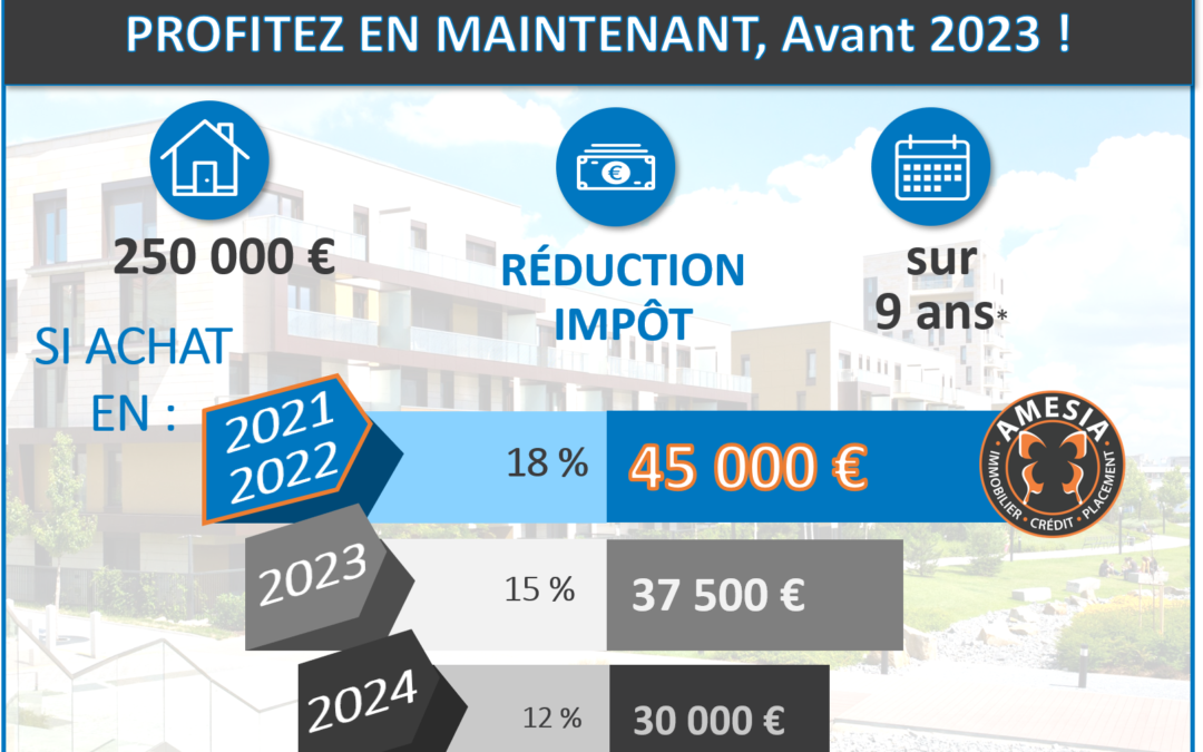 Investissement-immobilier-pinel-amesia